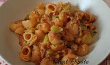 One pot pasta au thon et courgettes (cookeo)