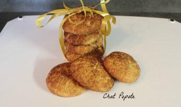 Snickerdoodles (biscuits bredele)